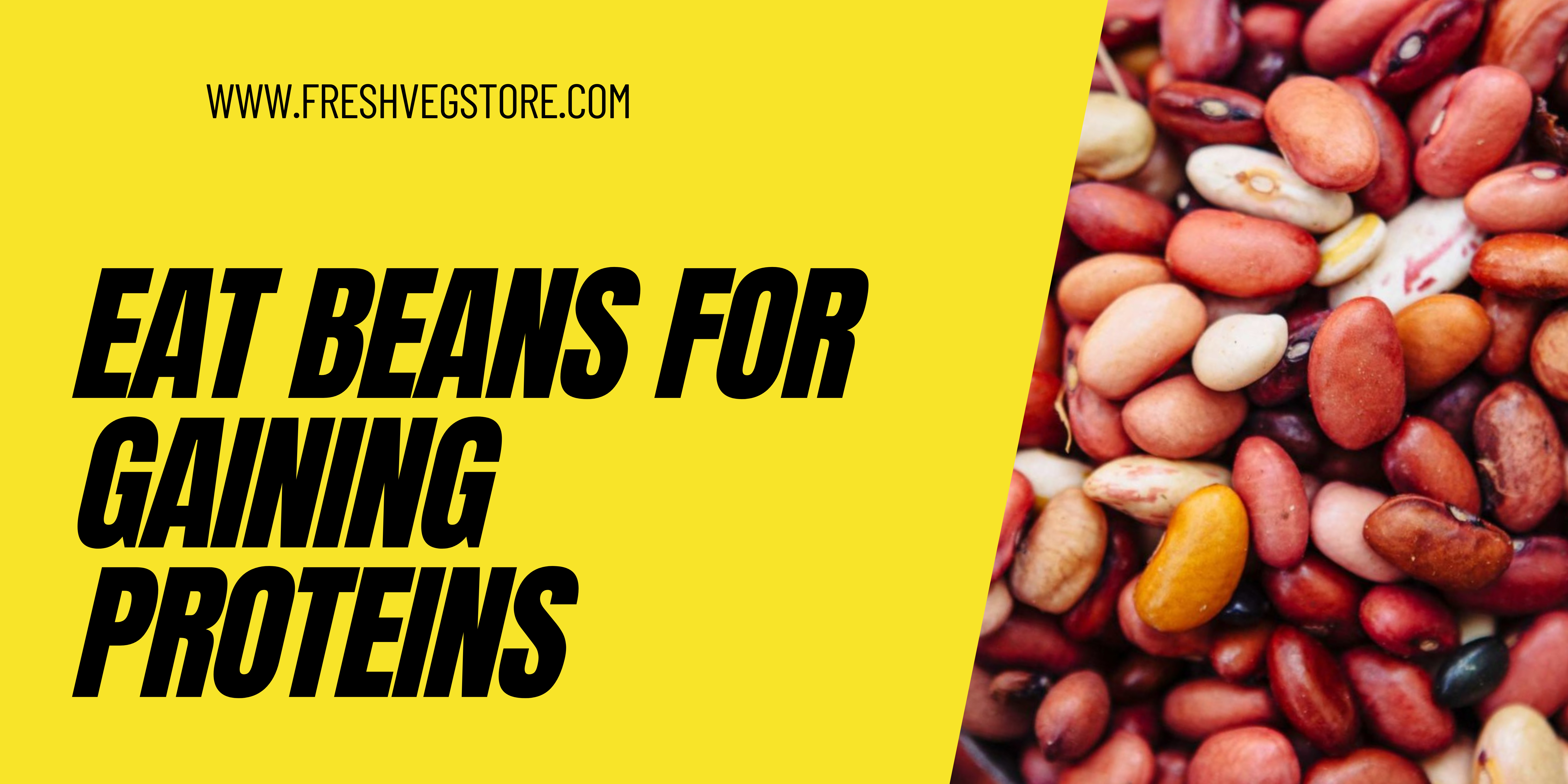 HOW BEANS ARE GOOD FOR GAINING PROTEINS