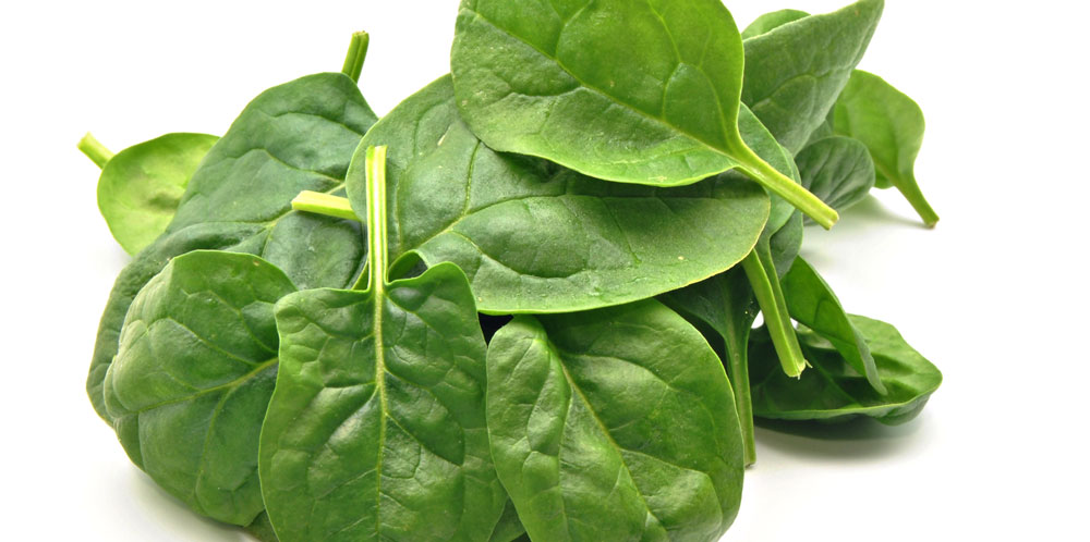 SPINACH IS GOOD FOR THE EYES